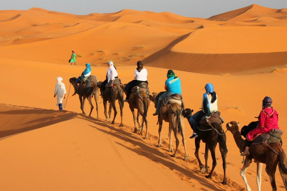 Dubai Desert Safari, Best Quality Tours