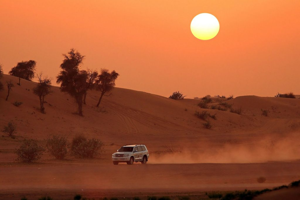 Advices on picking the best desert safari option